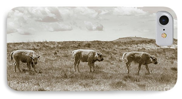 IPhone Case featuring the photograph Three Buffalo Calves by Rebecca Margraf