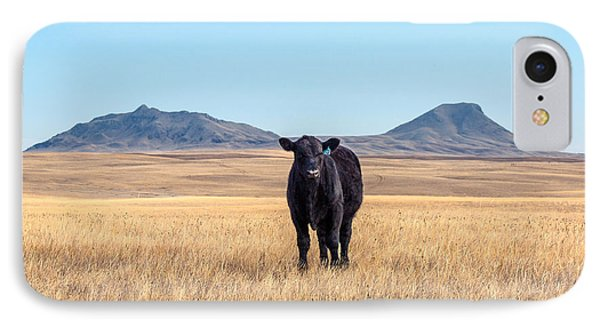 Three Buttes Steer IPhone Case by Todd Klassy
