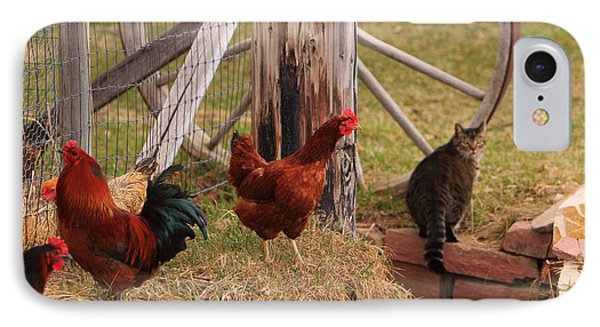 Three Chickens And A Cat IPhone Case
