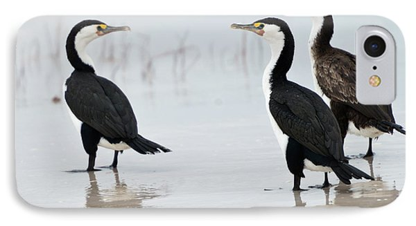 IPhone 7 Case featuring the photograph Three Cormorants by Werner Padarin