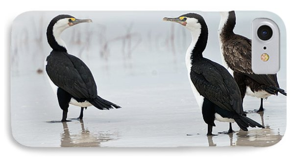 IPhone Case featuring the photograph Three Cormorants by Werner Padarin