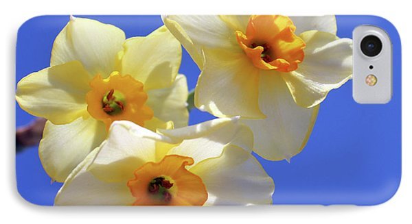 IPhone Case featuring the photograph Three Daffodils by Judy Vincent