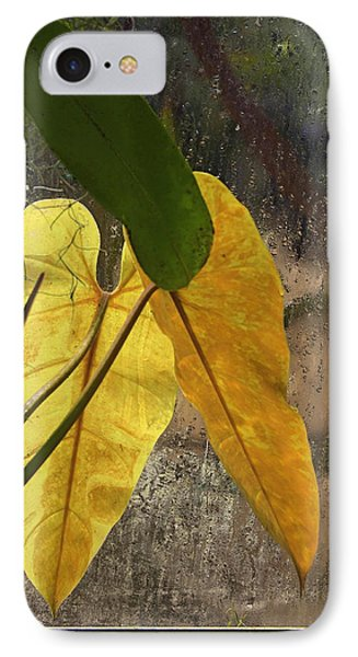 IPhone Case featuring the photograph Three Exotic Leaves by Viktor Savchenko