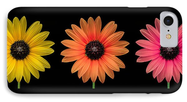 Three Flowers IPhone Case by Hudson Marsh