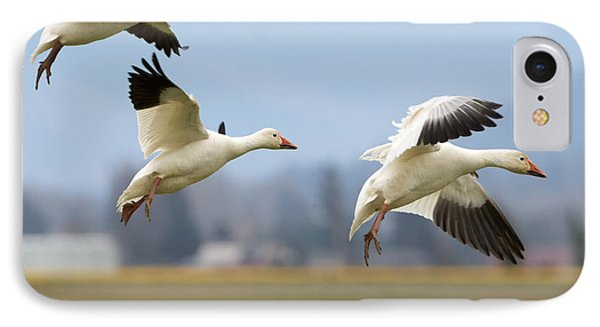 Three Landing IPhone Case by Mike Dawson