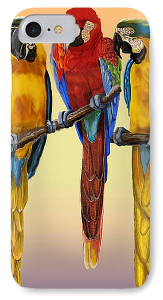 Three Macaws Hanging Out IPhone Case by Thomas J Herring