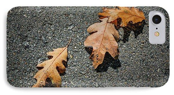Three Oak Leaves IPhone Case by Scott Norris