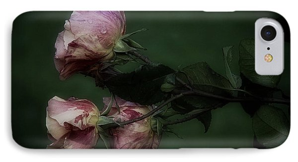 Three Romantic Roses IPhone Case by Richard Cummings