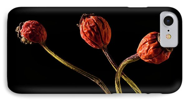Three Rose Hips IPhone Case by  Onyonet  Photo Studios