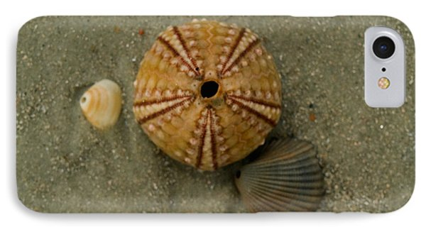 Three Shell Study IPhone Case