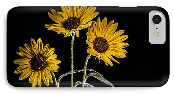 Three Sunflowers Light Painted On Black IPhone Case by Vishwanath Bhat