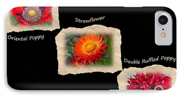 IPhone Case featuring the photograph Three Tattered Tiles Of Red Flowers On Black by Valerie Garner