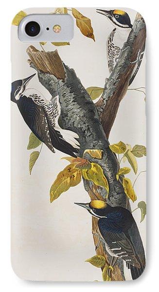 Three Toed Woodpecker IPhone 7 Case by John James Audubon