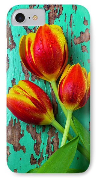 Three Tulips On Green Board IPhone Case by Garry Gay