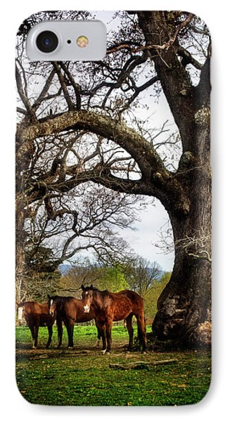Three Under A Tree IPhone Case by Greg Mimbs