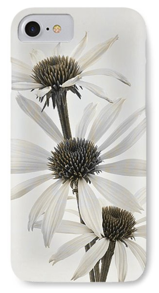Three White Coneflowers Phone Case by Sandra Foster