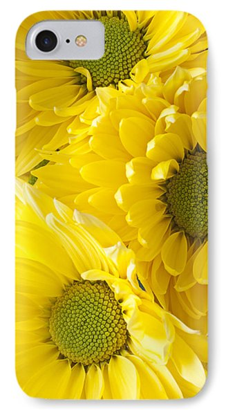 Three Yellow Daisies  Phone Case by Garry Gay