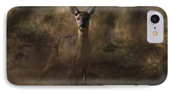 Through The Hedge Row  IPhone Case by Gary Bridger
