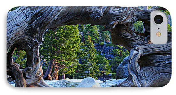 Through The Looking Glass IPhone Case by Sean Sarsfield