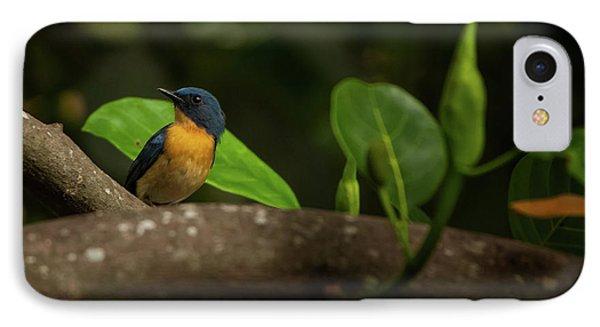 Tickell's Blue Flycatcher Phone Case by Venura Herath