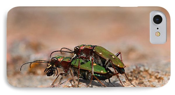 IPhone Case featuring the photograph Tiger Beetle by Richard Patmore