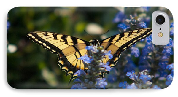 Tiger Butterfly Visiting Ajuga IPhone Case