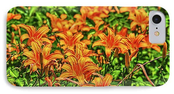 Tiger Lilies IPhone Case by Pat Cook