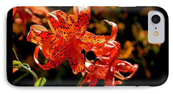 Tiger Lilies IPhone Case by Rona Black