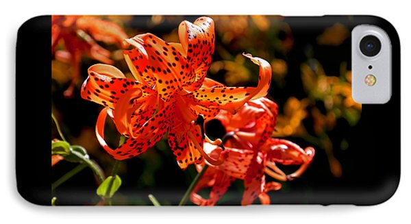Tiger Lilies Phone Case by Rona Black