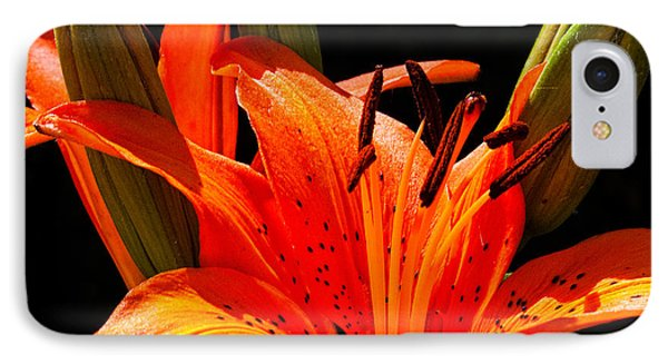 Tiger Lily Phone Case by Christopher Holmes