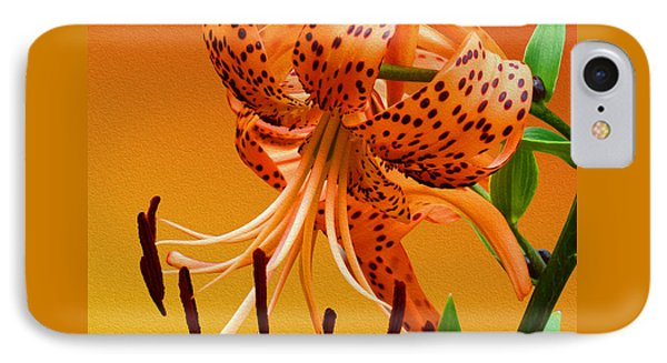 Tiger Lily IPhone Case by Mike McGlothlen