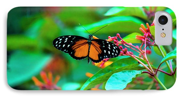 Tiger Longwing Butterfly IPhone Case by David Morefield