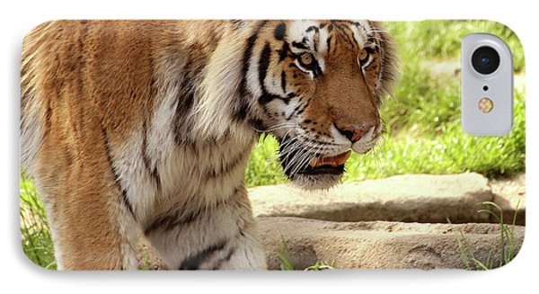 Tiger On The Hunt Phone Case by Gordon Dean II