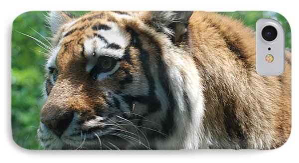 IPhone Case featuring the photograph Tiger Profile by Richard Bryce and Family