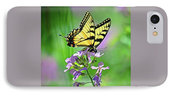 IPhone Case featuring the photograph Tiger Swallowtail by Rodney Campbell