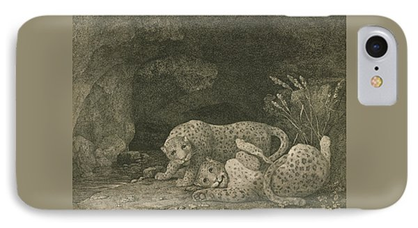 Tigers At Play IPhone Case by George Stubbs