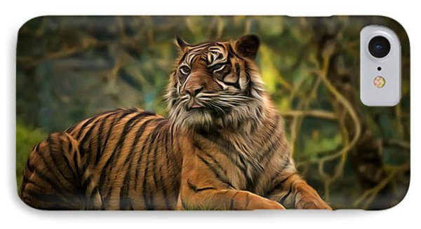 IPhone Case featuring the photograph Tigers Beauty by Scott Carruthers