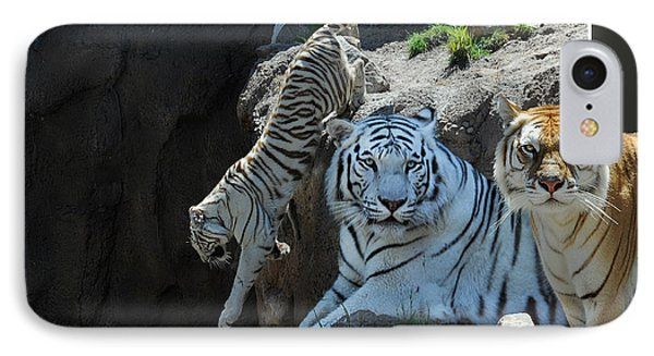Tigers Out Of Frame IPhone Case