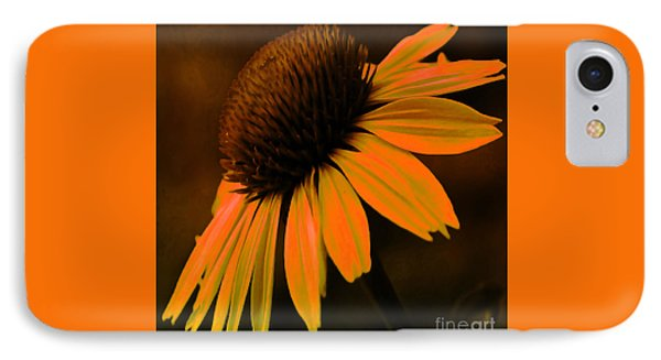 Tiki Torch Coneflower IPhone Case by Beverly Guilliams