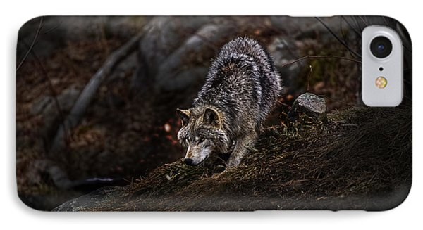 Timber Wolf On Hill IPhone Case by Michael Cummings