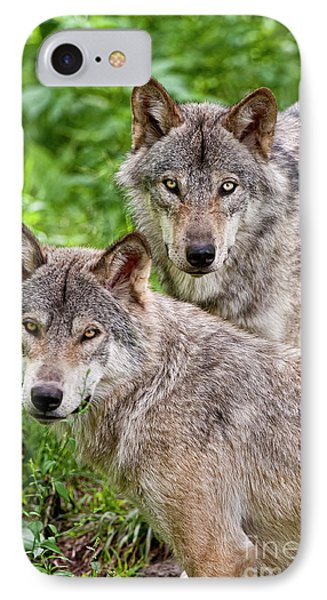 Timber Wolf Pair Phone Case by Michael Cummings