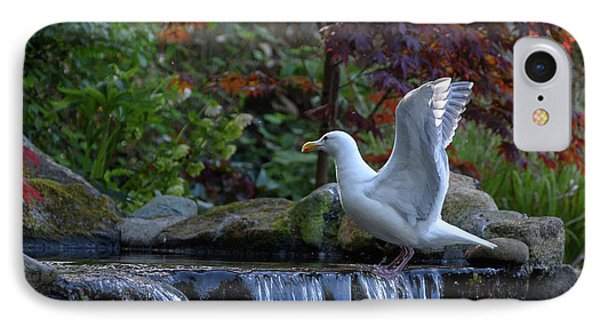 Time For A Bird Bath IPhone Case by Keith Boone