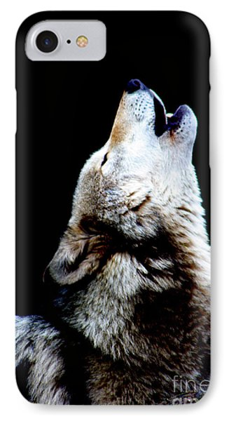 Time To Howl IPhone Case by Nick Gustafson