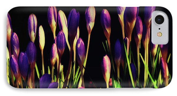 IPhone Case featuring the painting Tiny Crocus by Elaine Manley