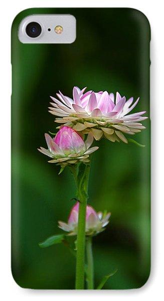 IPhone Case featuring the photograph Tiny Dahlias Green Aura by Byron Varvarigos