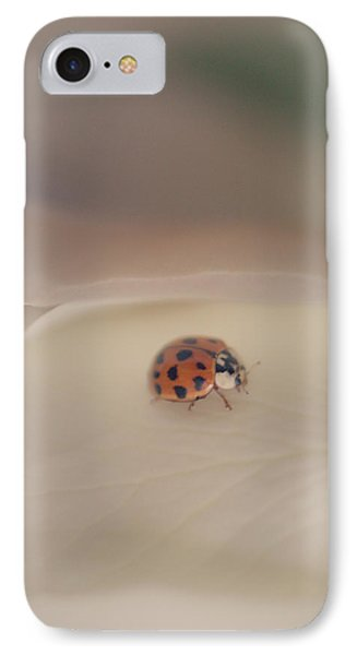 Tiny Lady On White Rose IPhone Case by The Art Of Marilyn Ridoutt-Greene