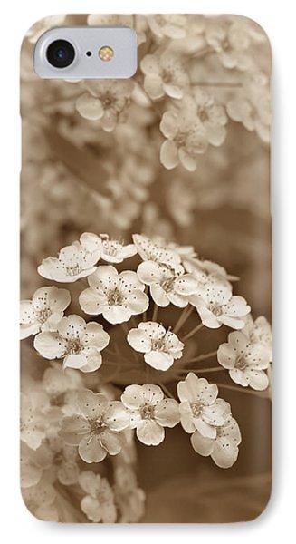 Tiny Spirea Flowers In Sepia IPhone Case