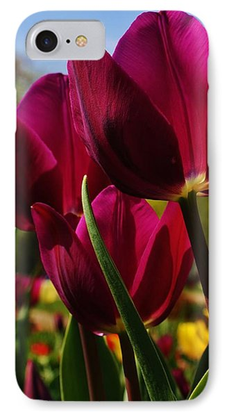 Tip Toe Through The Tulips IPhone Case by Bruce Bley