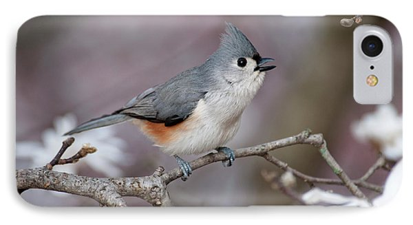 IPhone Case featuring the photograph Titmouse Song - D010023 by Daniel Dempster