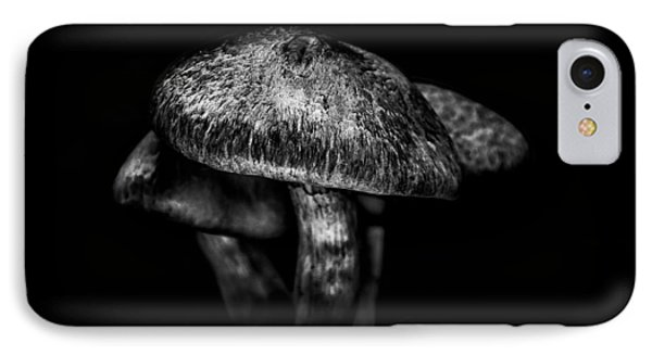 Toadstools On A Toronto Trail 1 IPhone Case